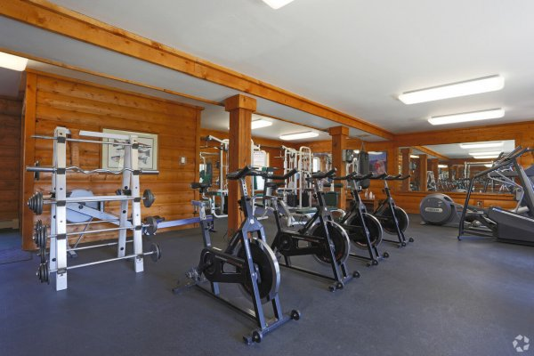 Stationary bikes, weights and treadmills in the fitness center