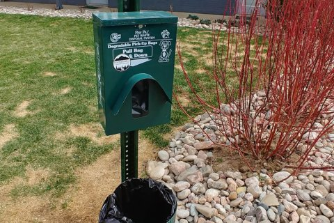 Pet waste station with bags and trash can